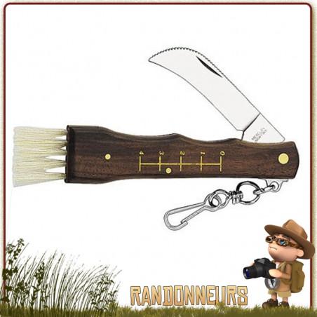 Couteau à Champignons 11 cm Herbertz