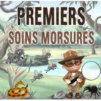 Premiers Soins Morsures